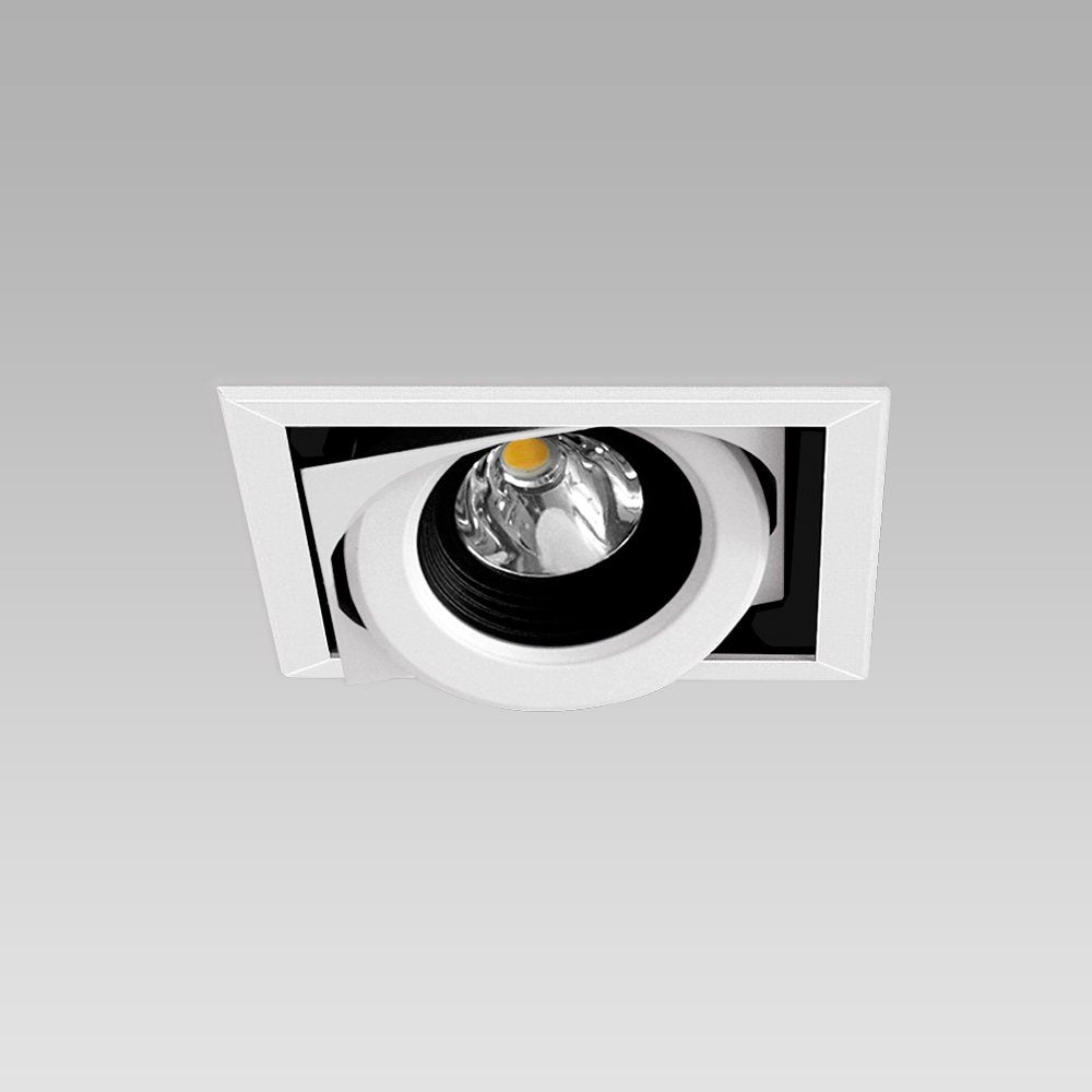Ceiling recessed downlight for functional lighting of interiors, with adjustable spotlights - 1 spot version