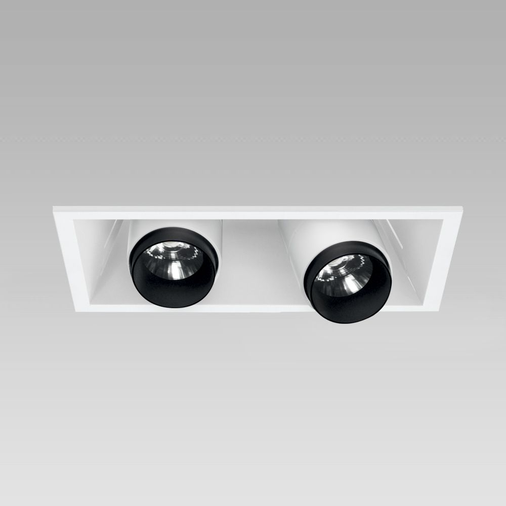 Ceiling recessed downlight for functional lighting of interiors, with adjustable spotlights - 2 spots version